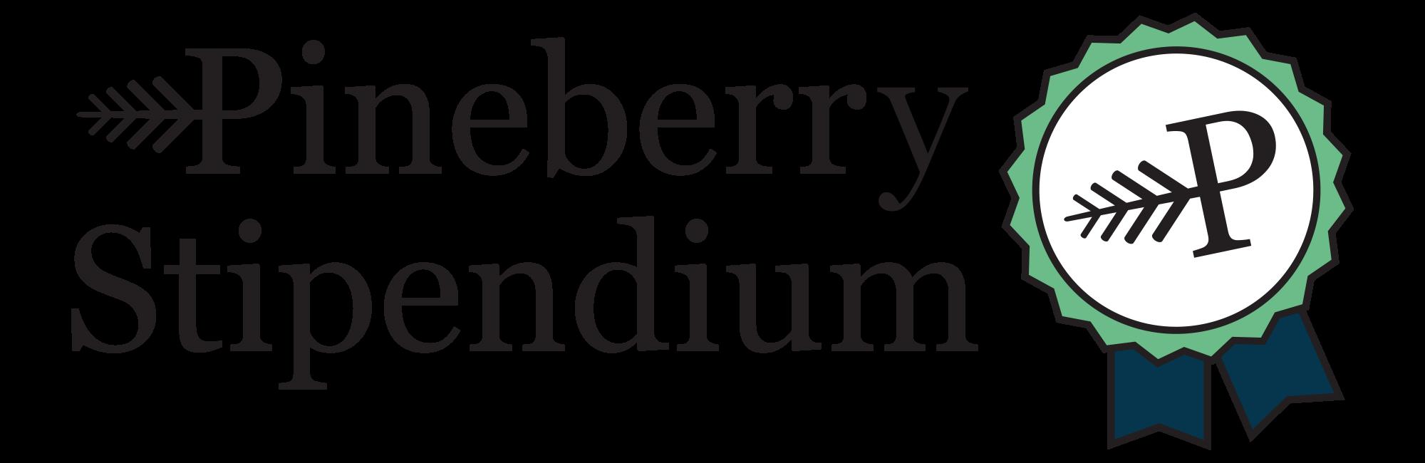 Pineberry Stipendium för digital marknadsföring